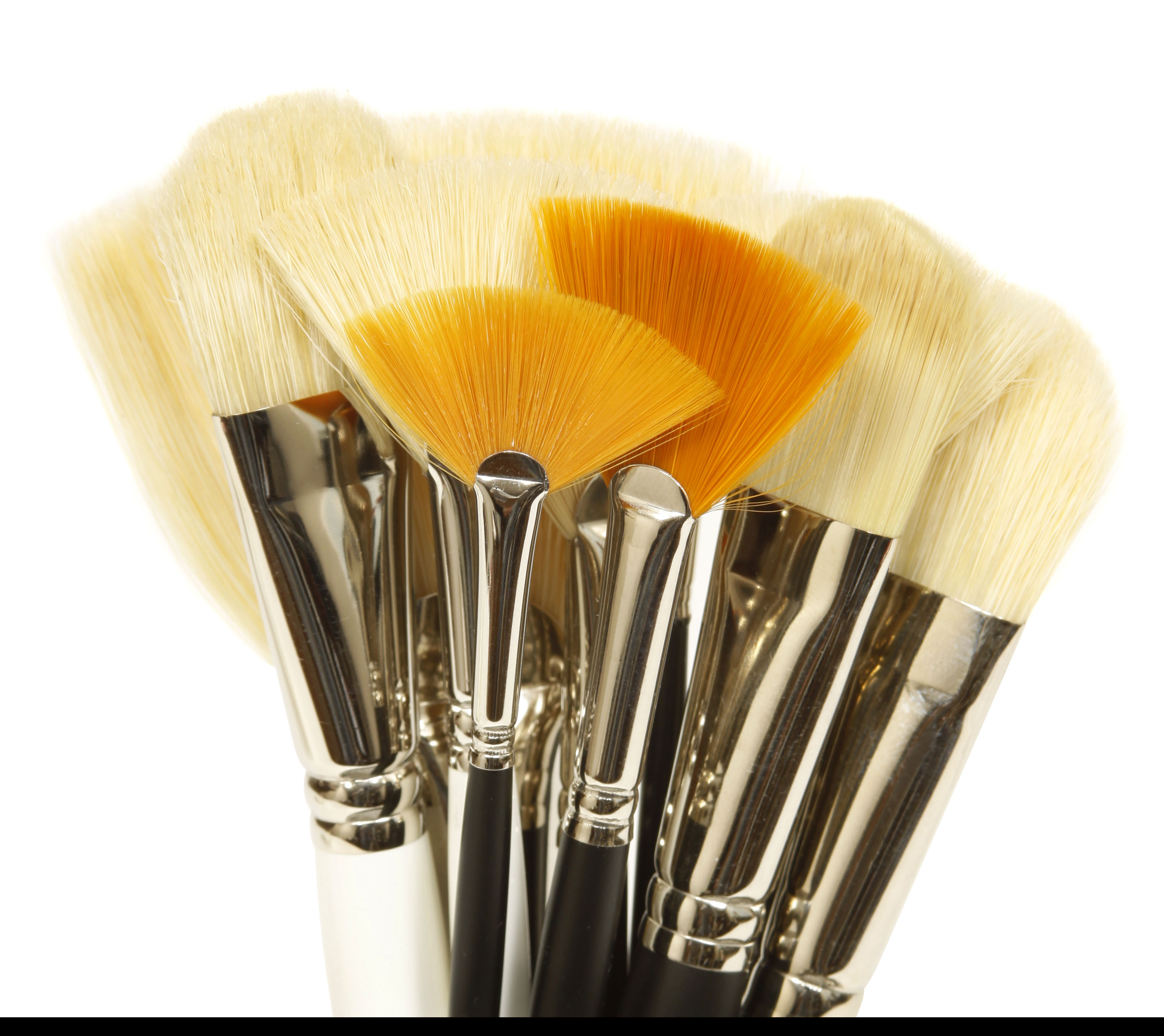 Skin Care Treatment Brushes