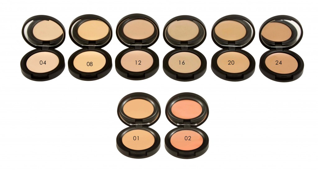 NaturalConcealerShades